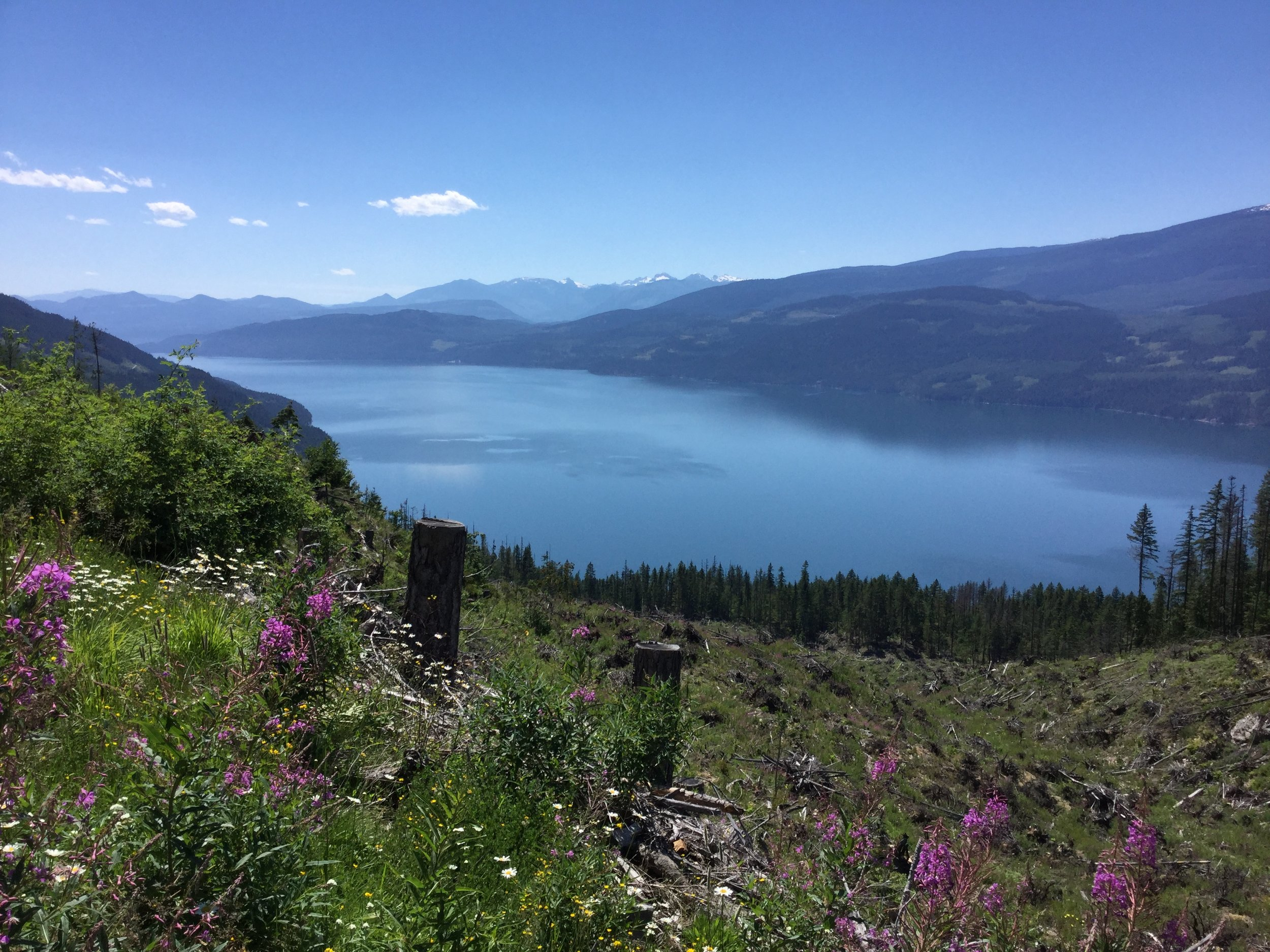 Looking southwest in the Columbia River Valley near Nakusp.