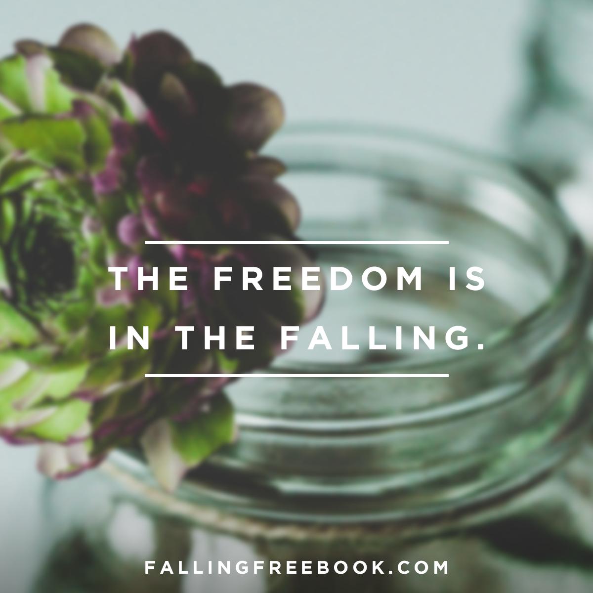 FallingFree_meme_freedom.png