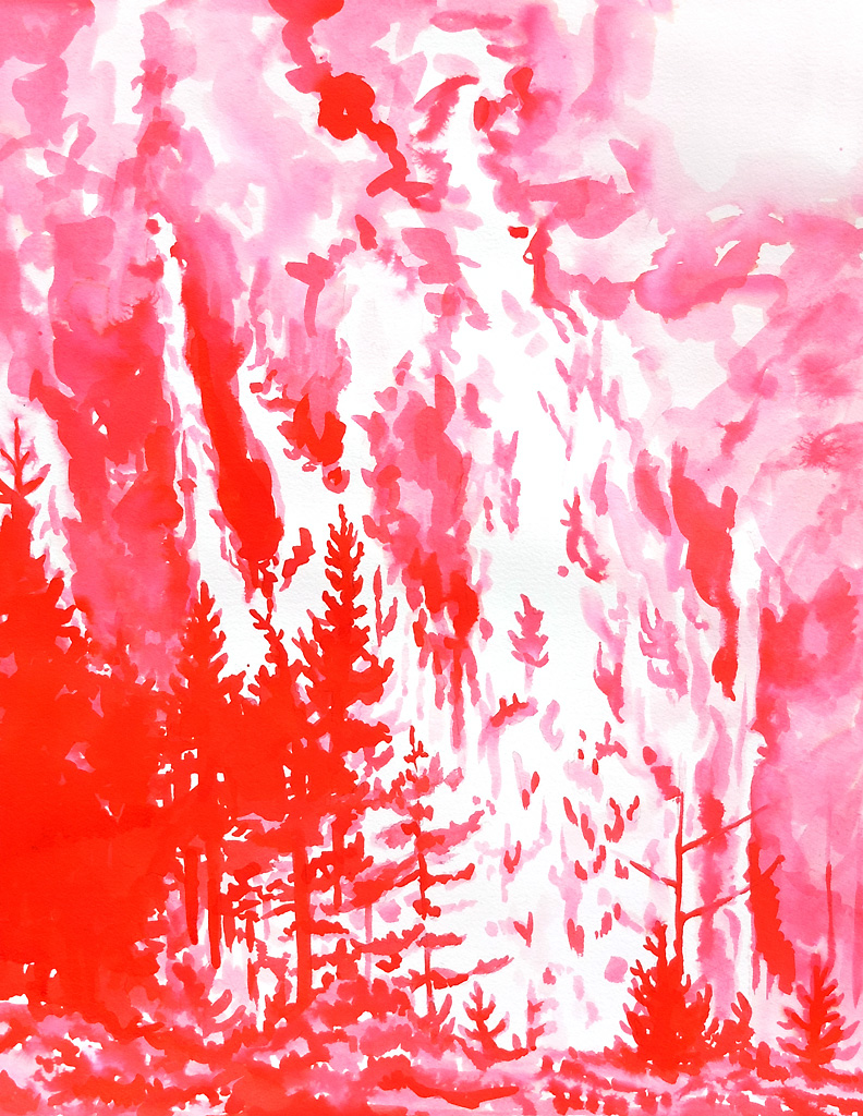 """""""Pink Wildfire"""""""