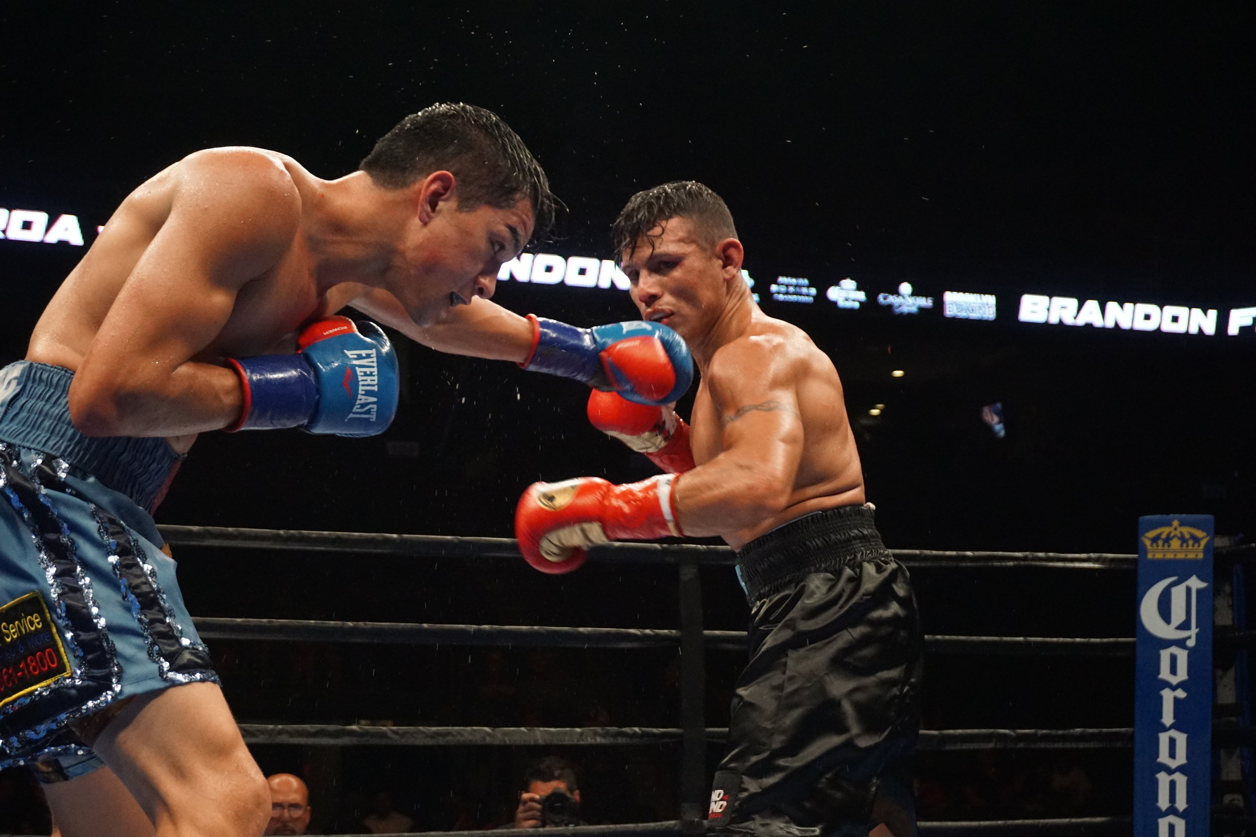 Figueroa throws a left jab by Andrea Antolini