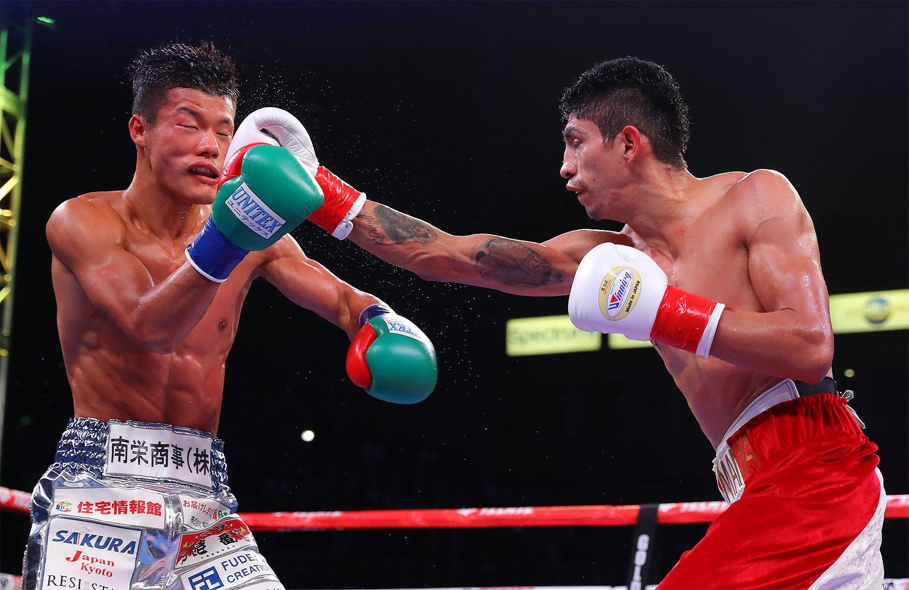 Rey Vargas lands a right hand on Tomoki Kameda by Tom Hogan/ Hogan Photos