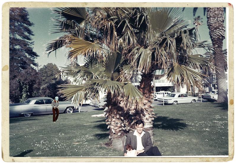 Saudade: Kodak Snaps - Palm Tree