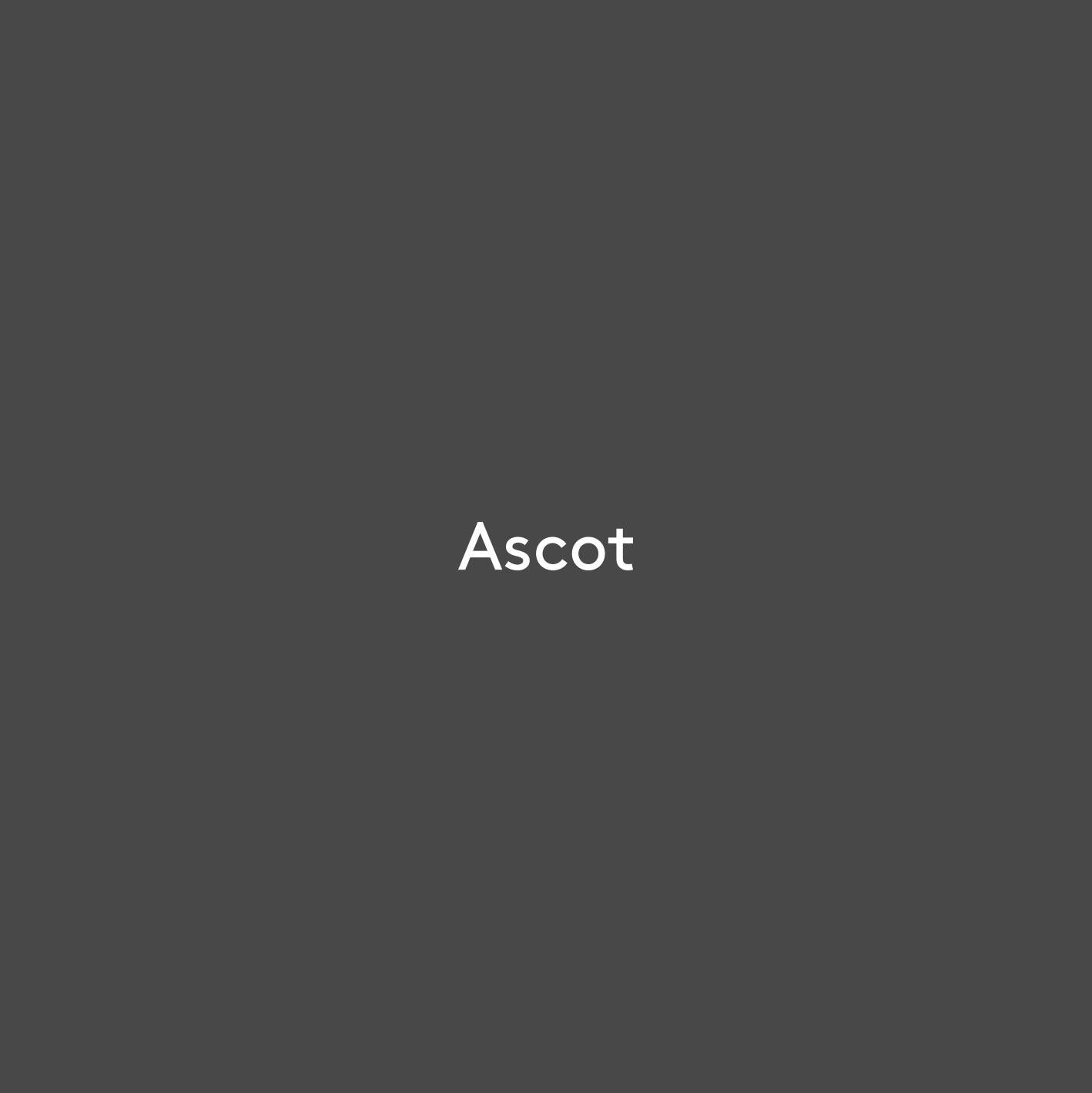 Synergy-Property-Ascot.jpg