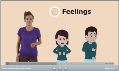 Establishing current triggers, responses and consequences to perceived stress for each user