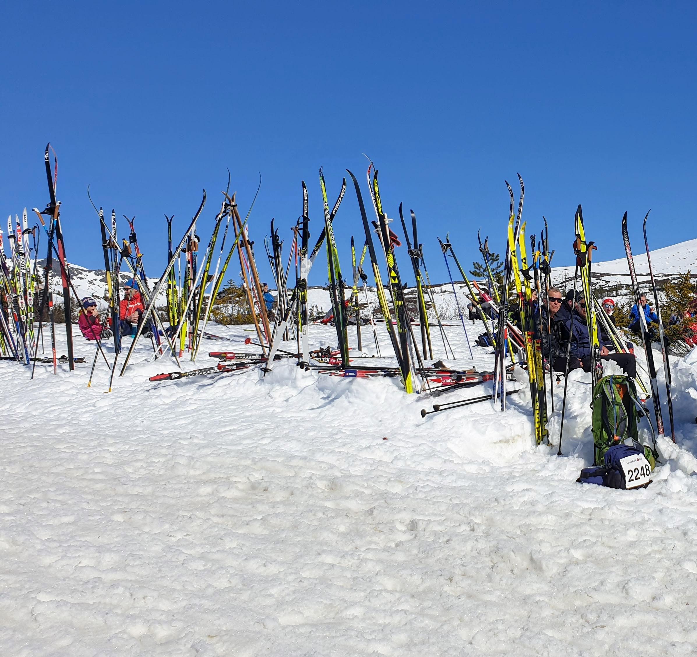 Holmvassløpet