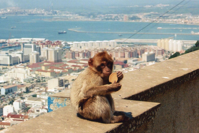 Gibraltar-radio-3-1500X1000.jpg