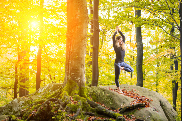 Get Grounded: An Autumn Yoga Sequence for Calm and Stability — Balance Garden