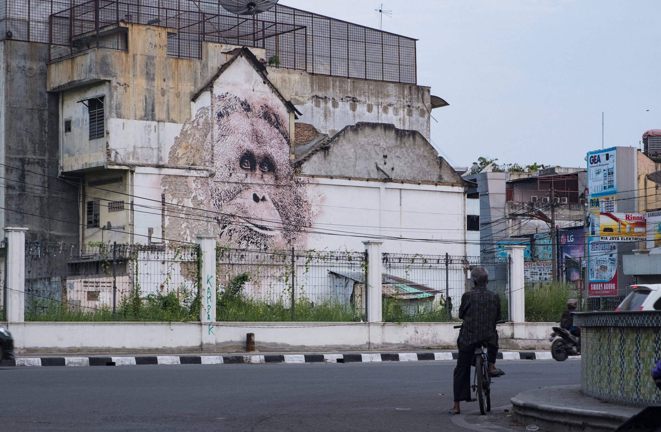 Alexandre Farto aka Vhils Image Credit Ernest Zacharevic man with bike.jpg