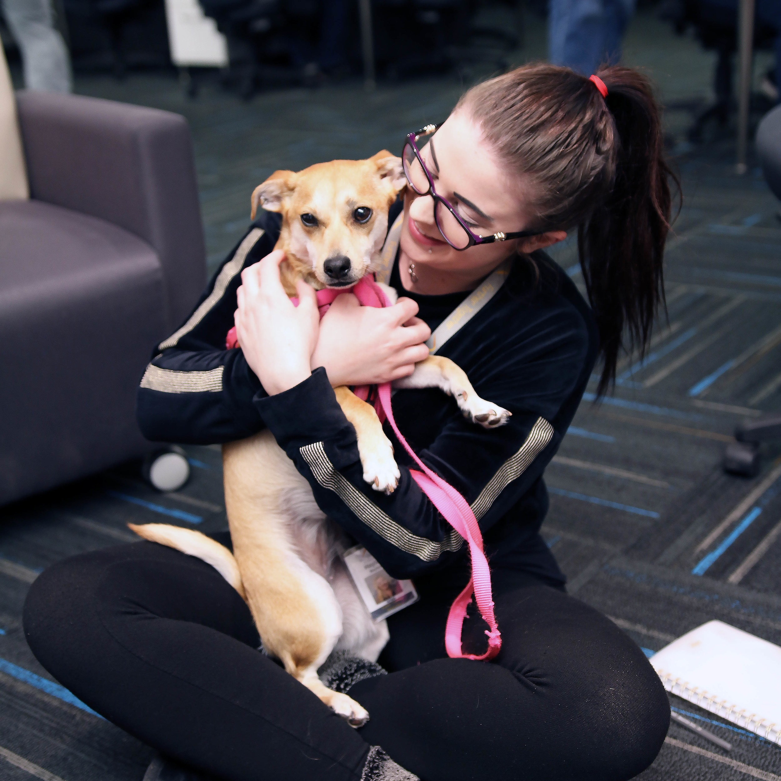 Employees have the opportunity to interact with furry friends on Dog Days
