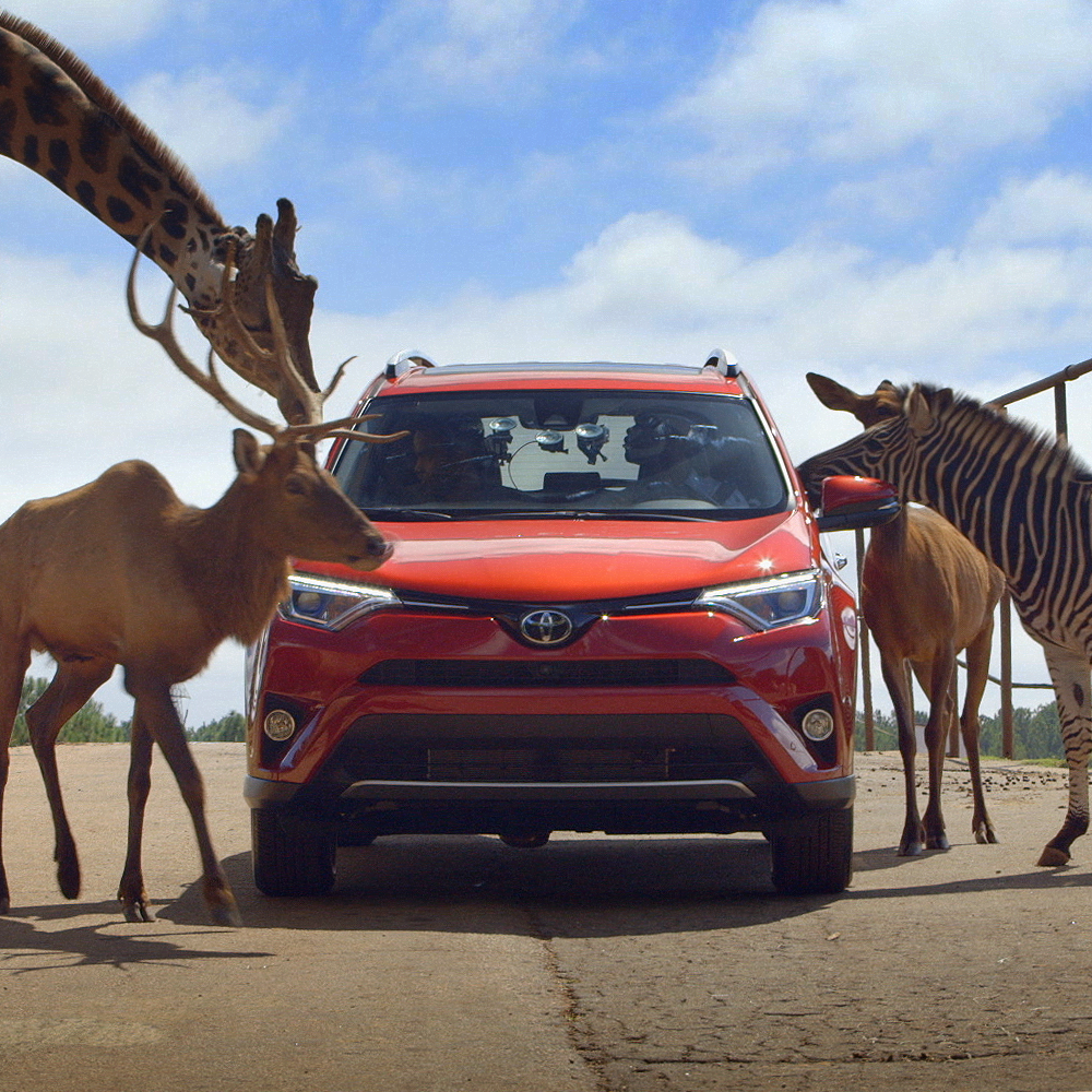 Southeast Toyota  - Wild Ride
