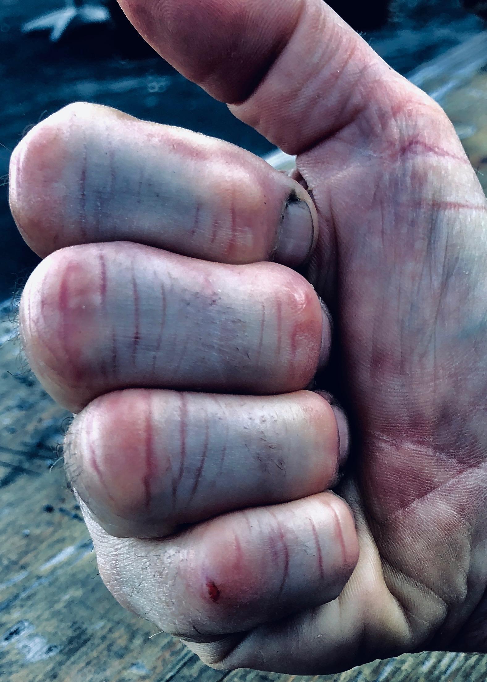 101018 hands1.jpg