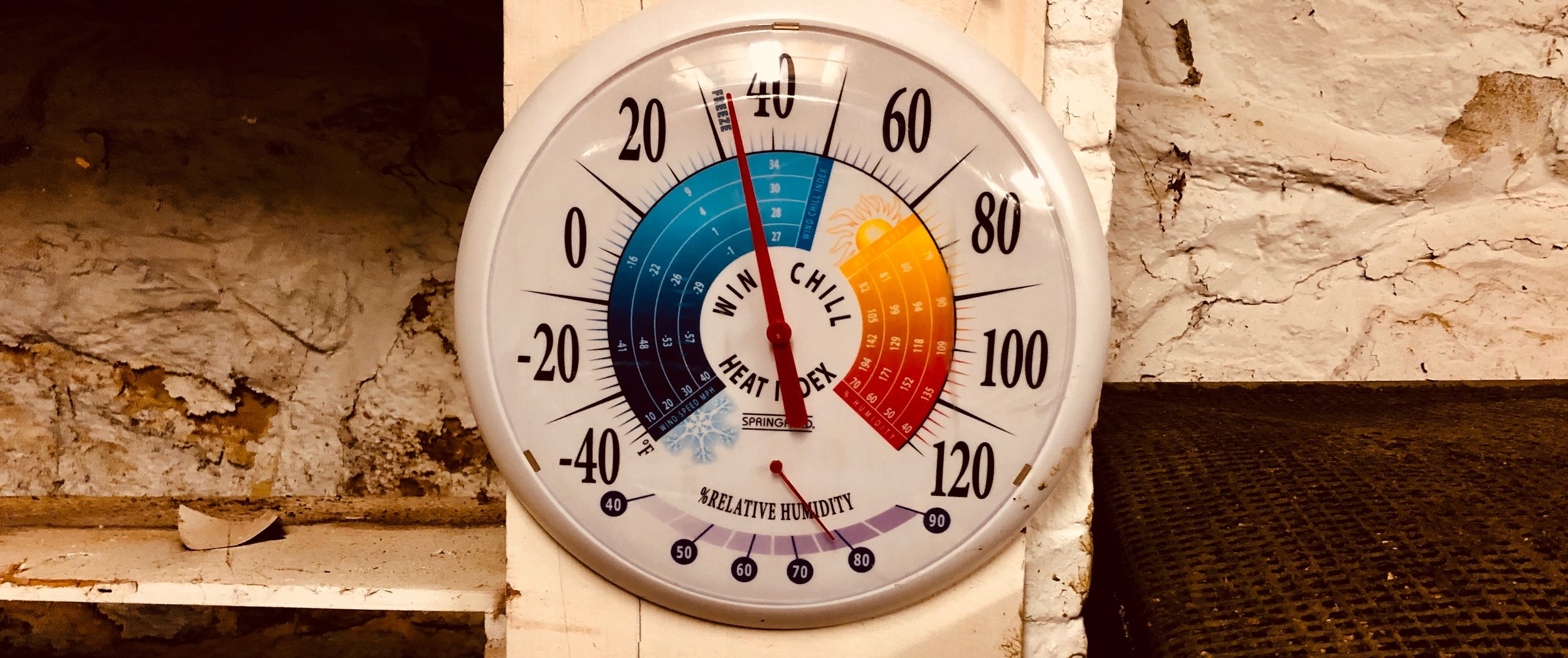Temperature and humidity is important. This picture was taken on one of the single-digit mornings. The root cellar was at 34 degrees with a relative humidity of 80%. That's pretty darn good!
