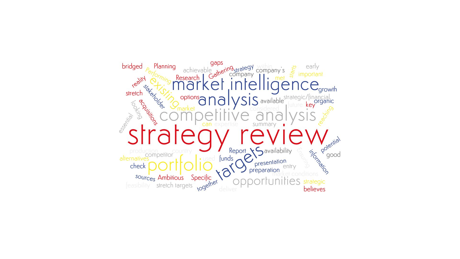 A word cloud emphesizing Salève Energy Partner's expertise in Strategy Review