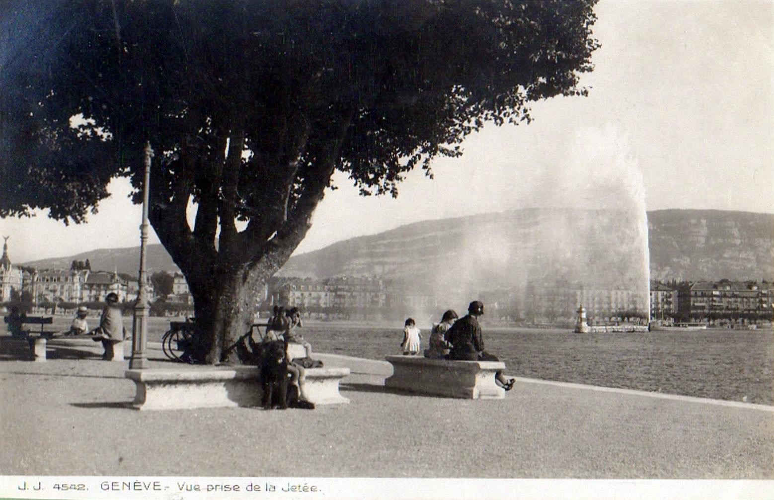 Vintage postcard of Geneva with a view from la Rade, with people sitting under a big tree over the Jet d'Eau and the Salève.