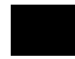 website deign logo.png