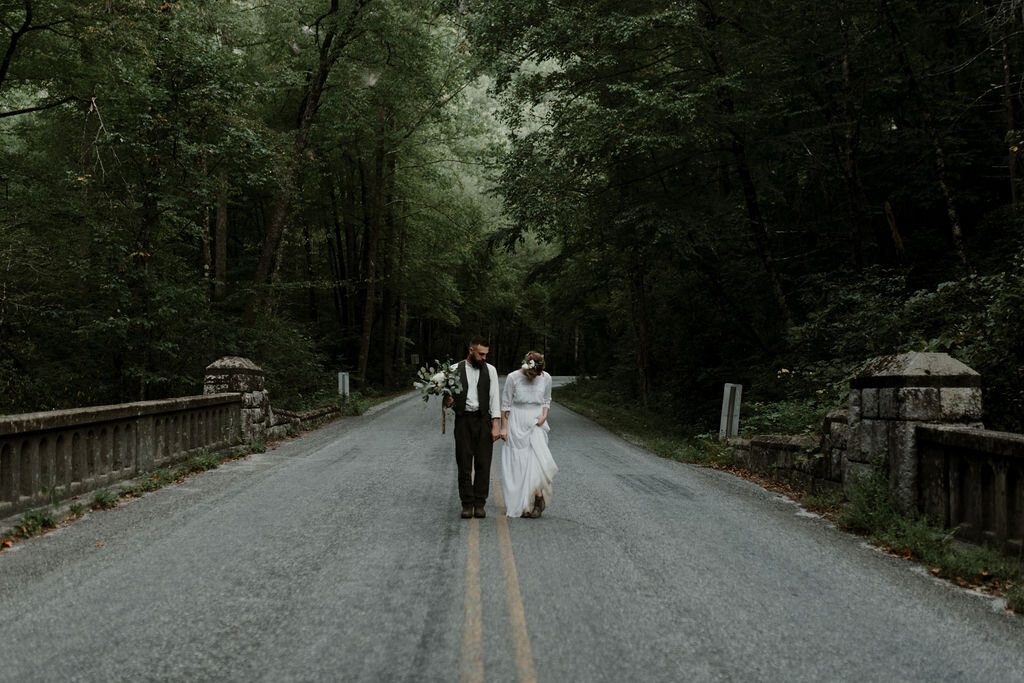 Blue_Ridge_Parkway_Elopement_Michelle&CrosbyDSC_1437-Edit.jpg