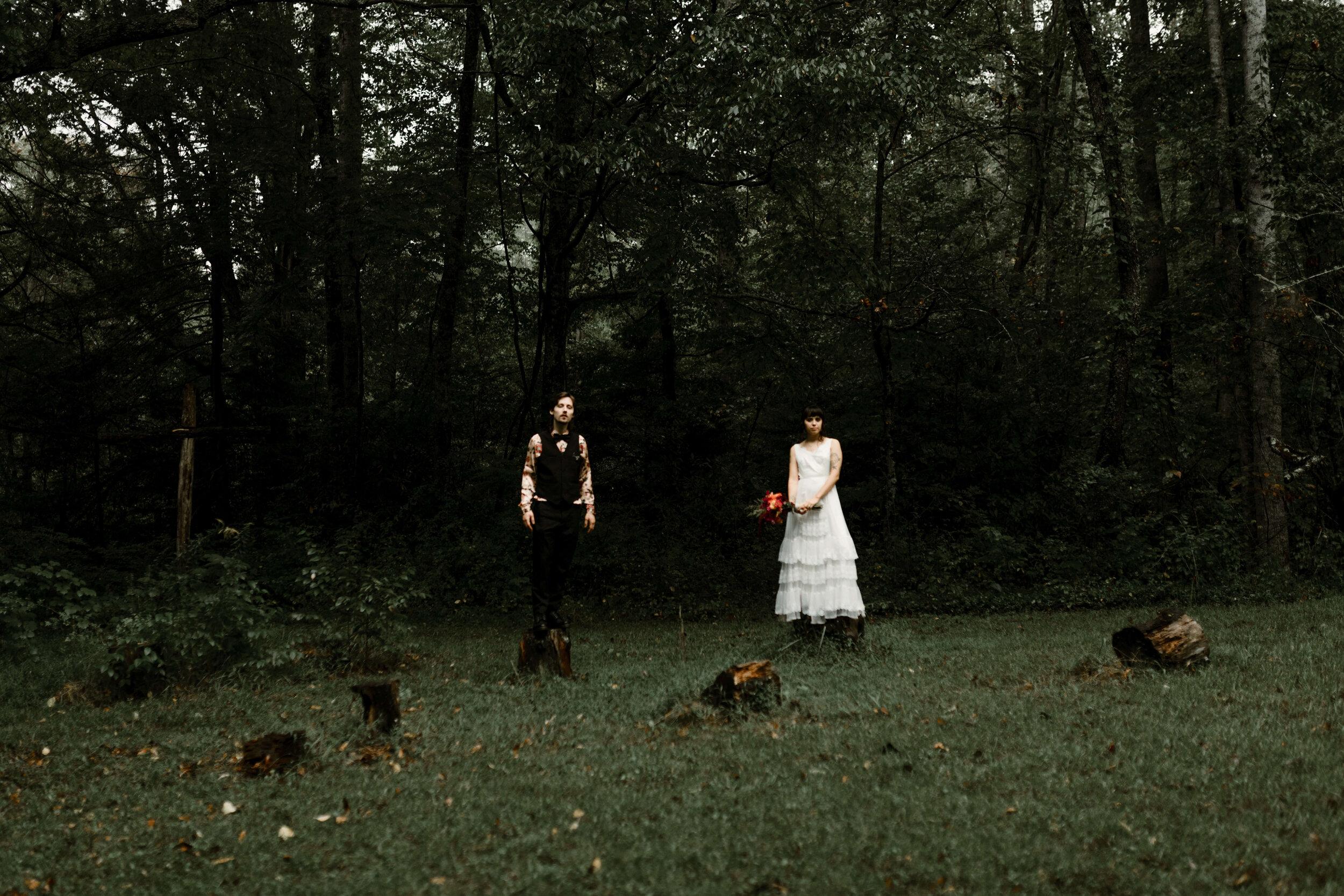 ASHEVILLE_WEDDING_TESS_AND_RYANDSC_5300.jpg