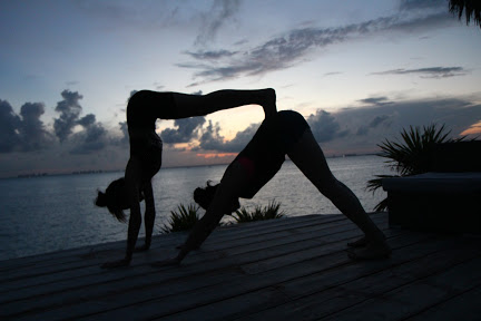 Coco B Yoga Sunset Ocean View Dog Pose