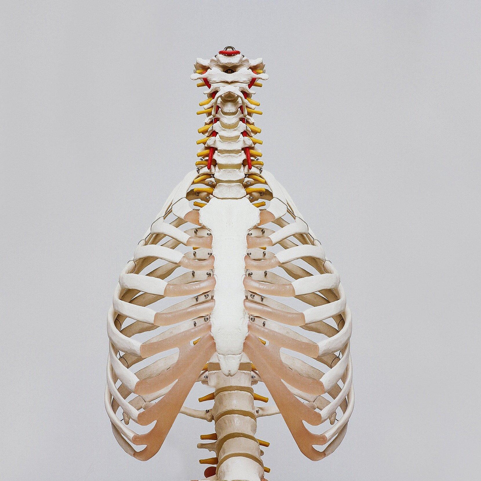 Pulmonary disorders -