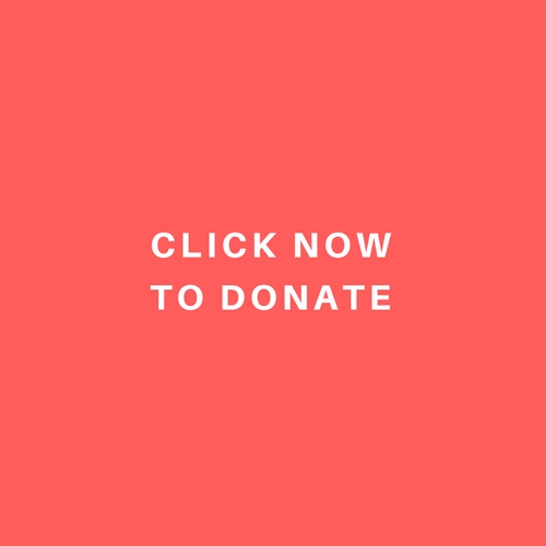 CLICK NOW TO DONATE.jpg