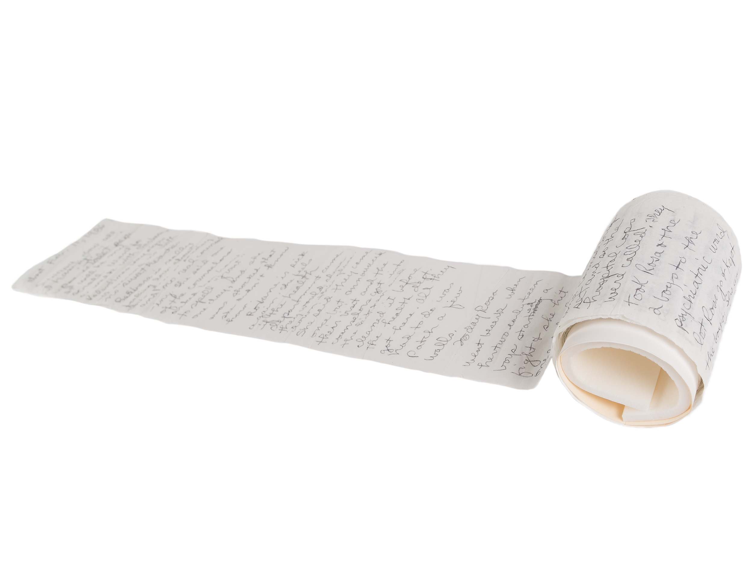 Eleanor Skelton Cash diary on rolls of toilet paper, 1986