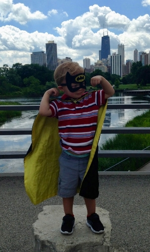 Gotham is Safe! - The Dark Knight at the Lincoln Park Zoo.