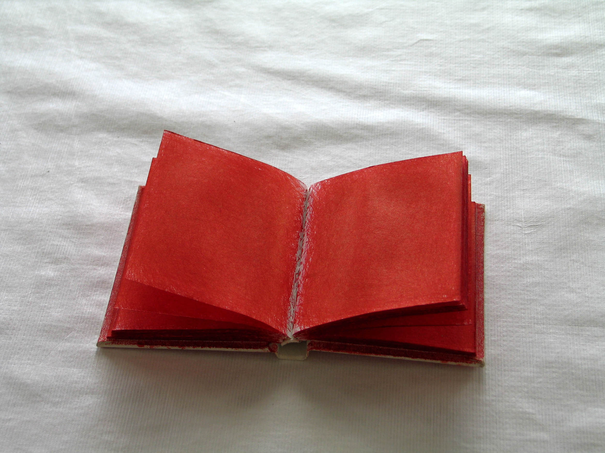 Red Scribble Book