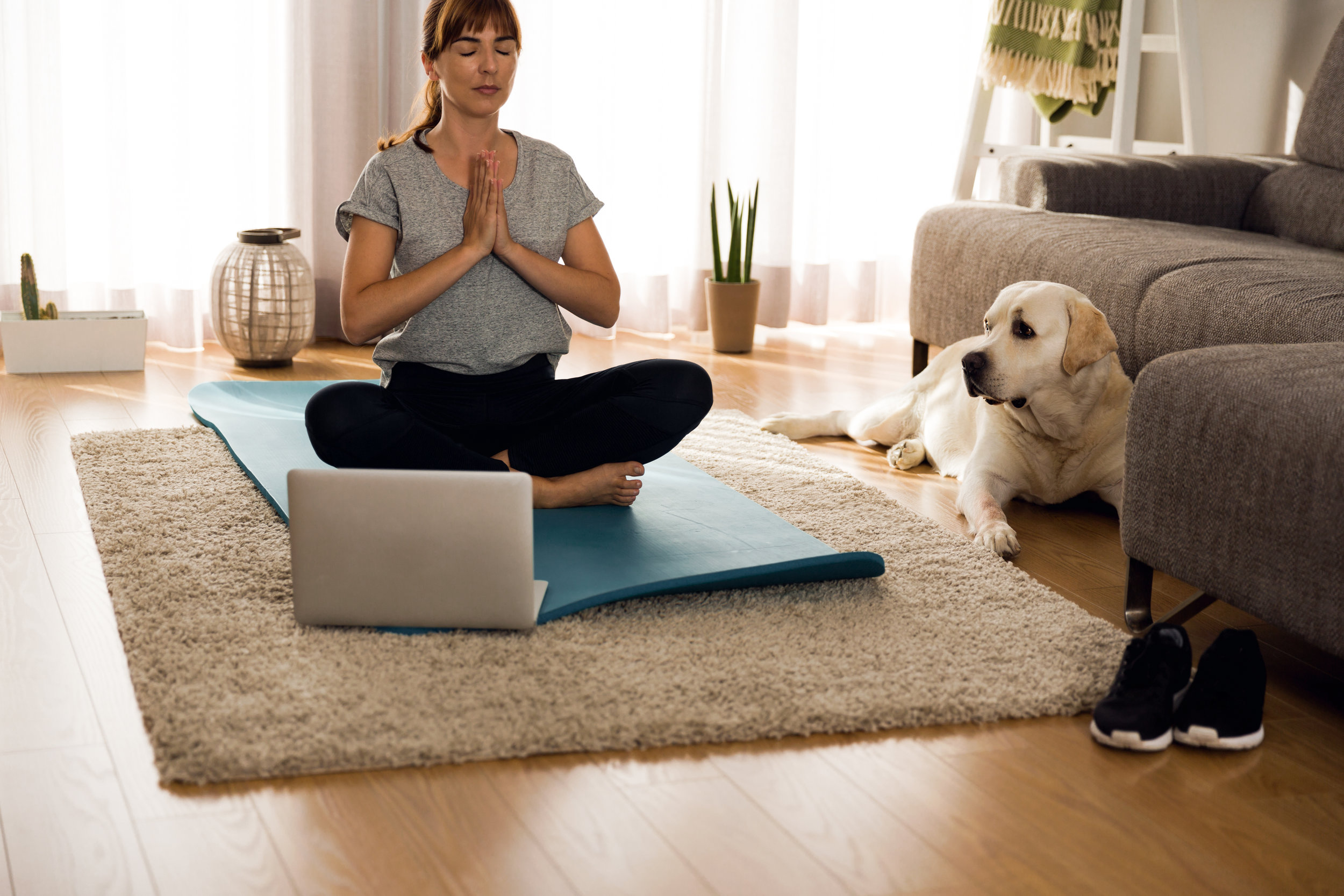 YOGA WITH LAPTOP AND DOG.jpeg
