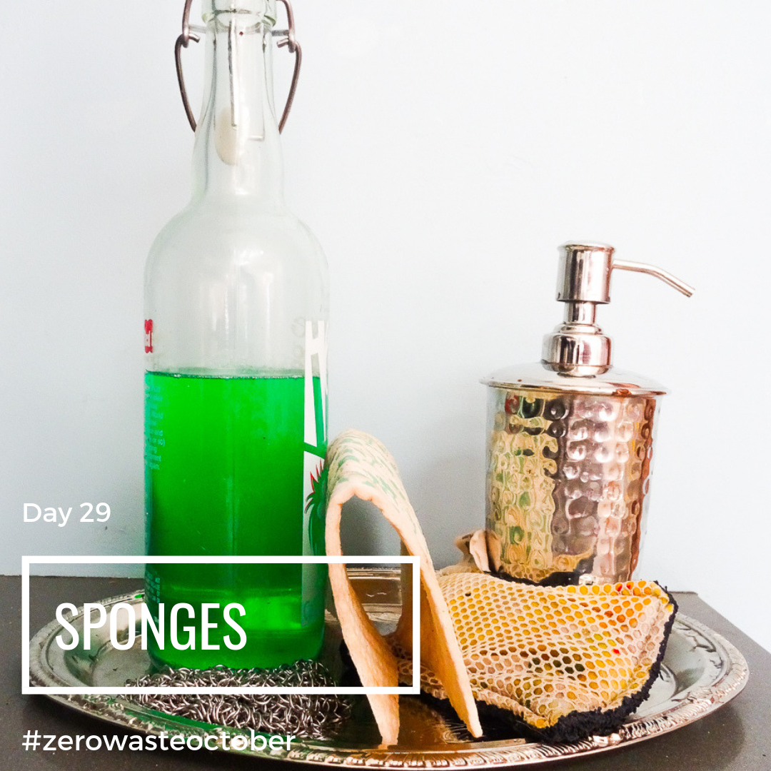 Sponges and Scrubber