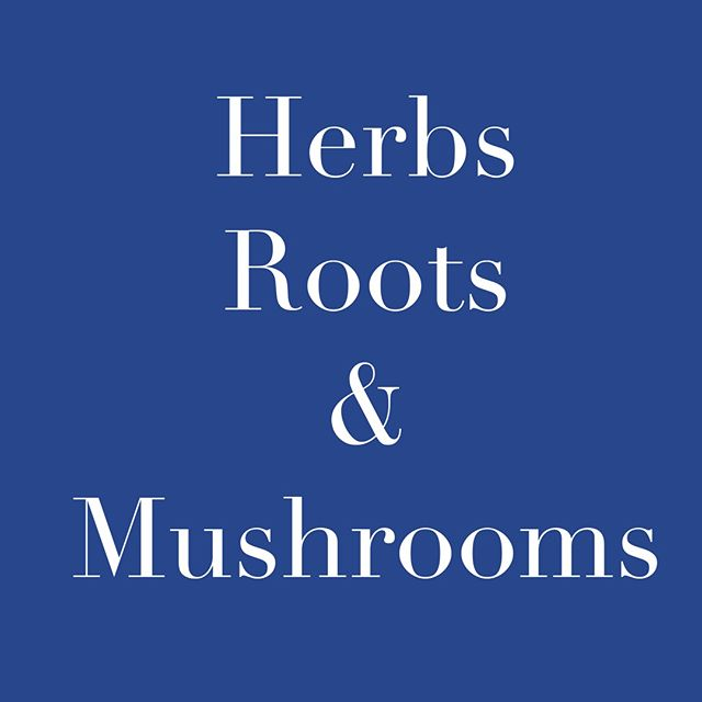 Being at our highest performance is about understanding ourselves, being kind to ourselves and others, knowing what's good for our bodies and being comfortable pushing the limits and boundaries of our comfort zones. The herbs, roots, and mushrooms in Performance Tea have been known to help increase the health of our bodies. . . . . . . . . . . . . . . . . . . . . . . . . . . . . . . . . . . .  #adaptogens #mushrooms #energy #focus #balance #stamina #movement #plantbased #yoga #yogafood #clarity #discipline #health #vitality #venicebeach #superfoods #nutrition #wellness #meditation #tea #reishi #athlete #perseverance #cordyceps #astralagus #cbd #hemp