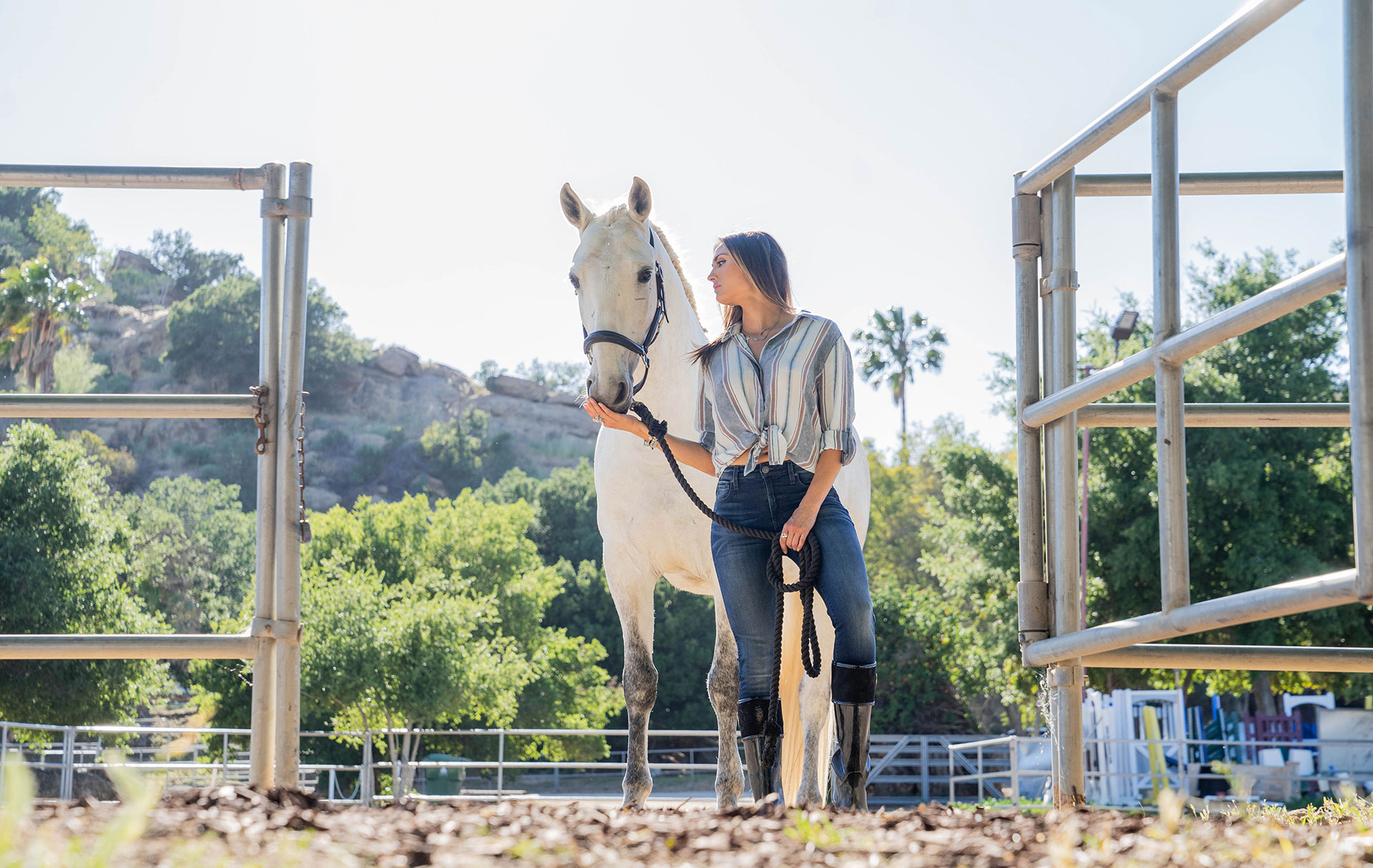 A HIGHER CALLING - ANIMAL ADVOCATE KATIE CLEARY