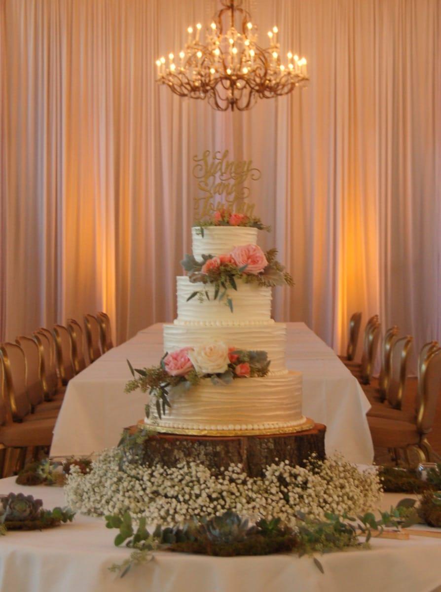 vanessa's-cake-09-19-39-561-io.jpg