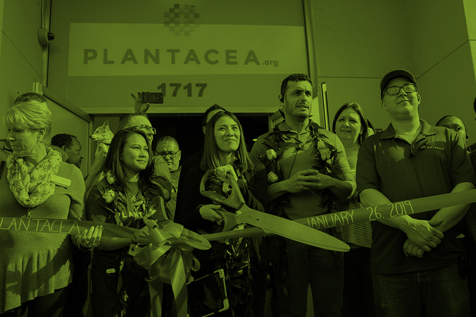 Plantacea Seaside Grand Opening 2019