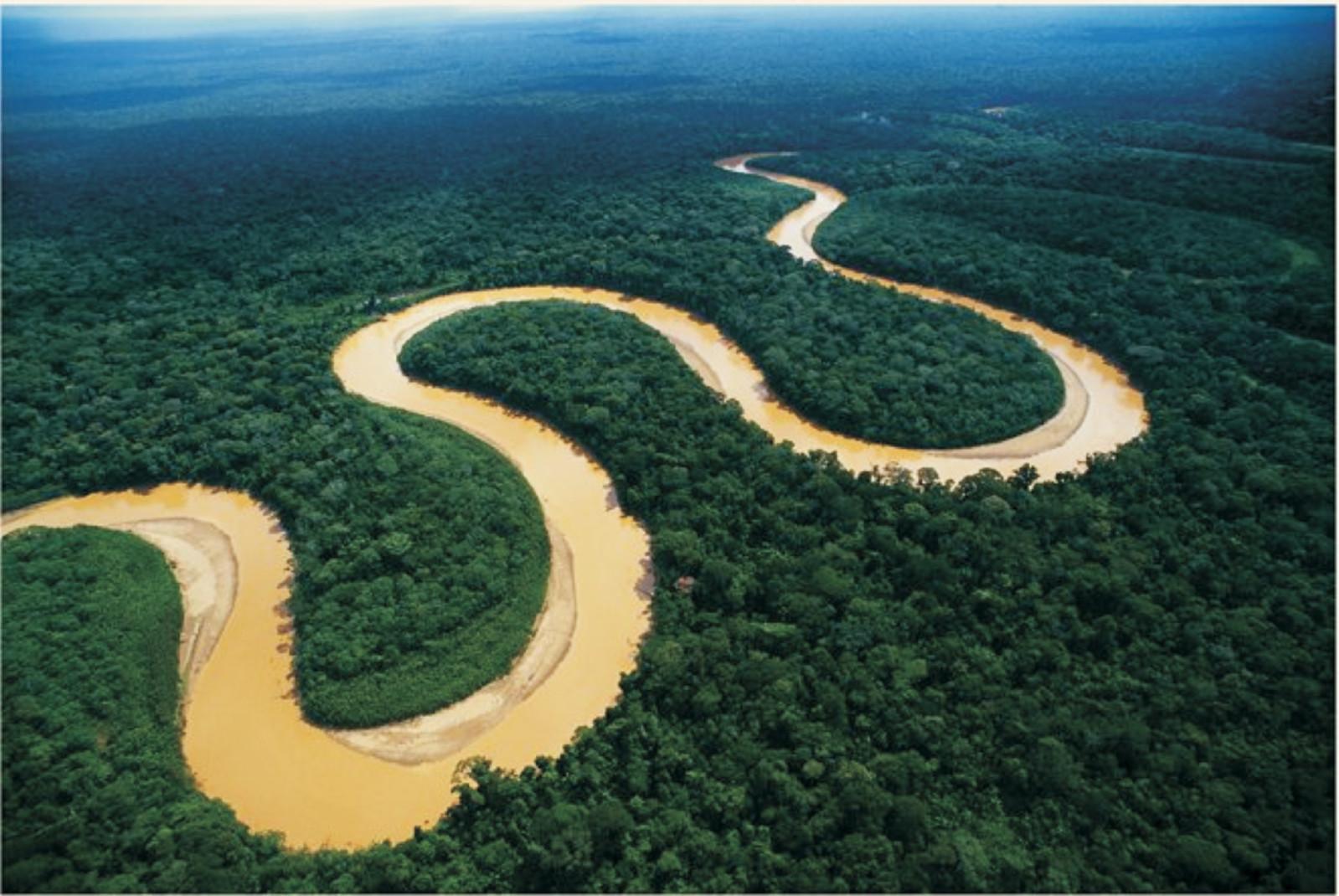 Brazil Amazonas Tour 11.jpg