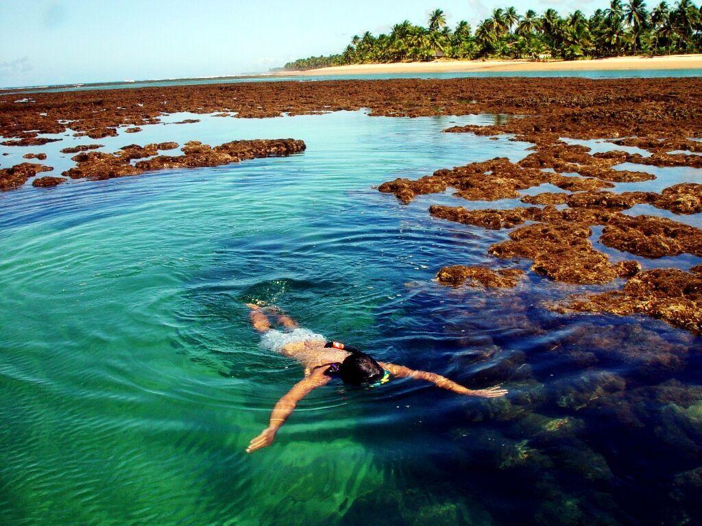 Brazil Cacau coast 6.jpg