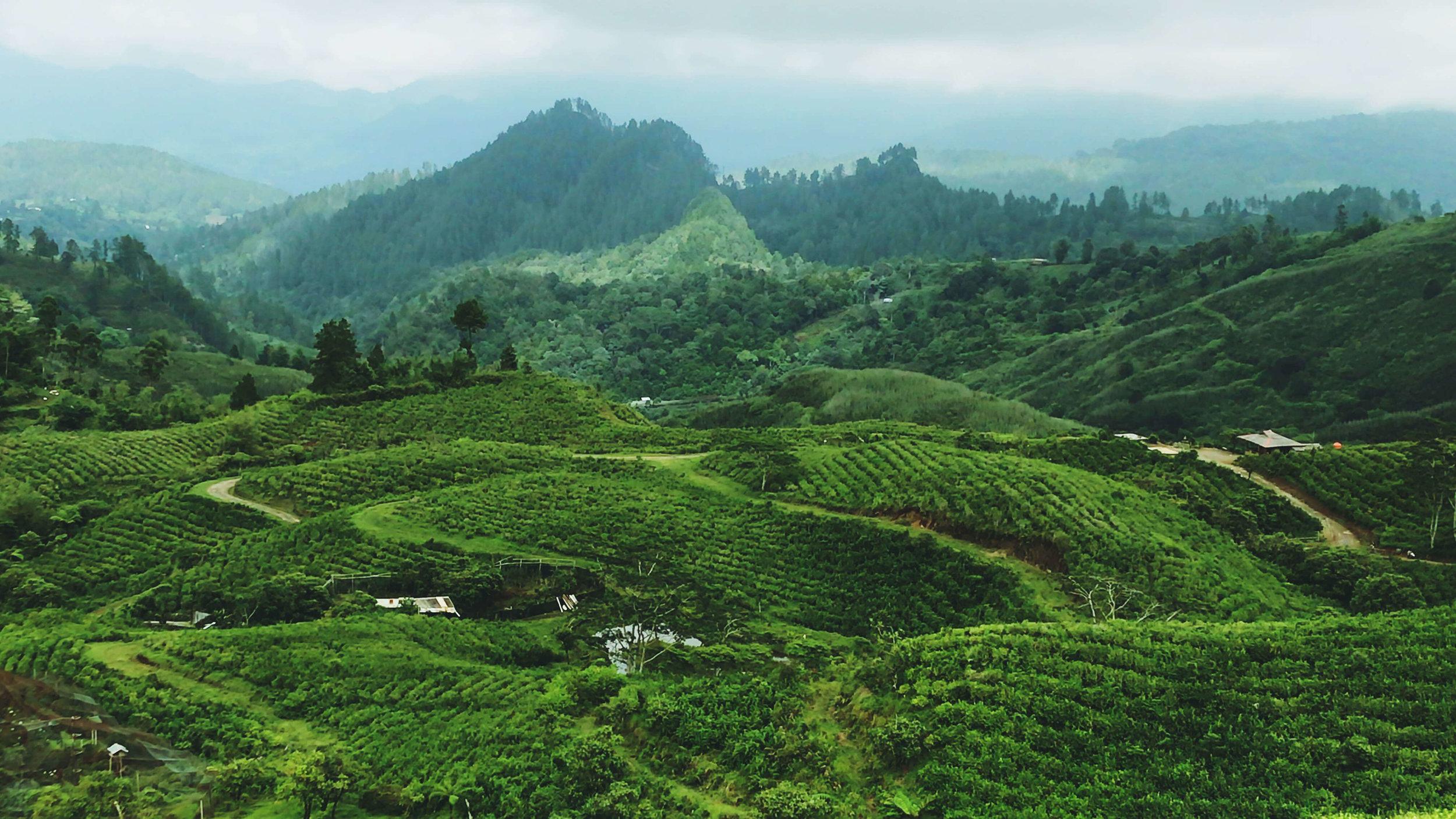 Sulawesi wonderful south.jpg