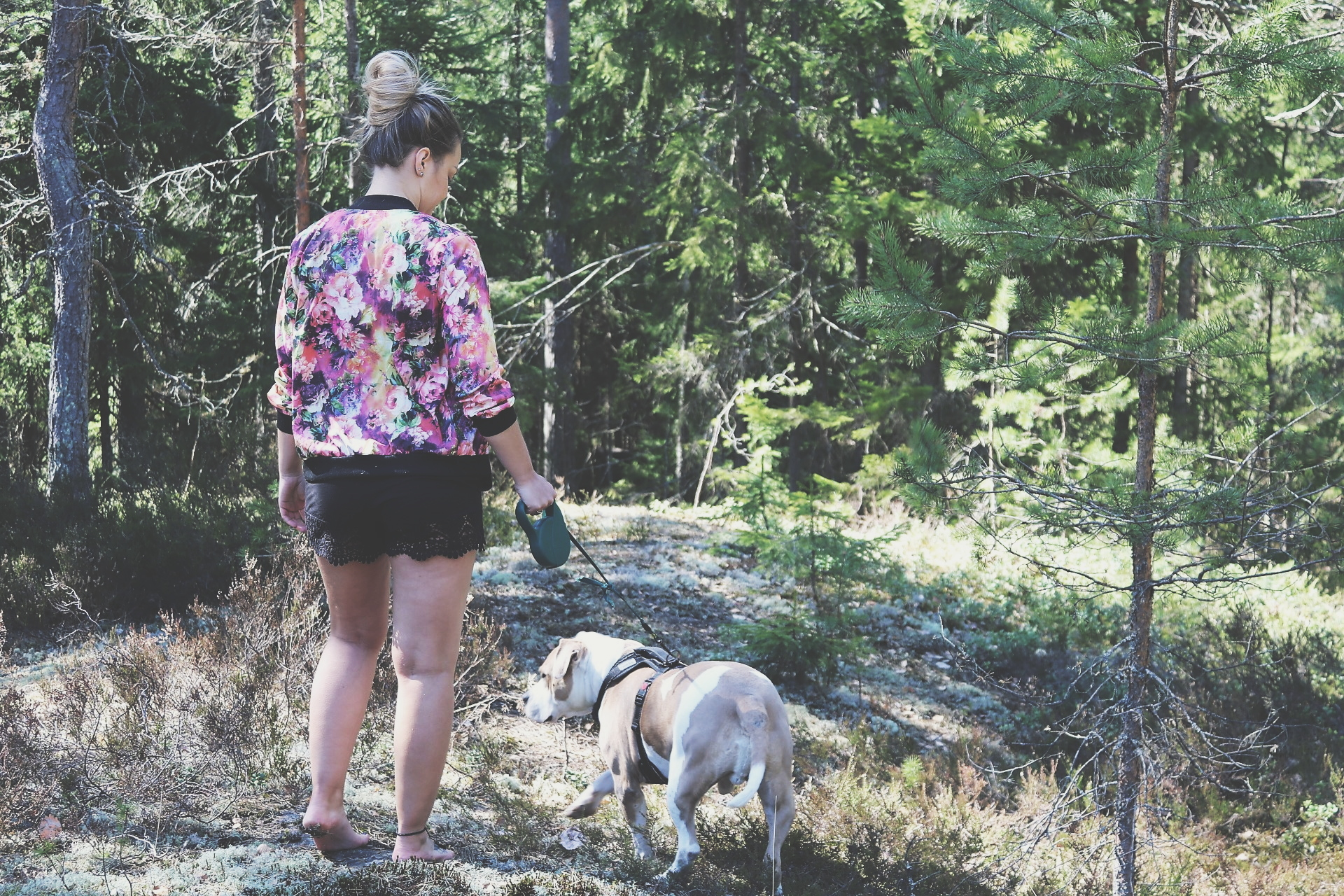 walking_in_the_woods.jpg