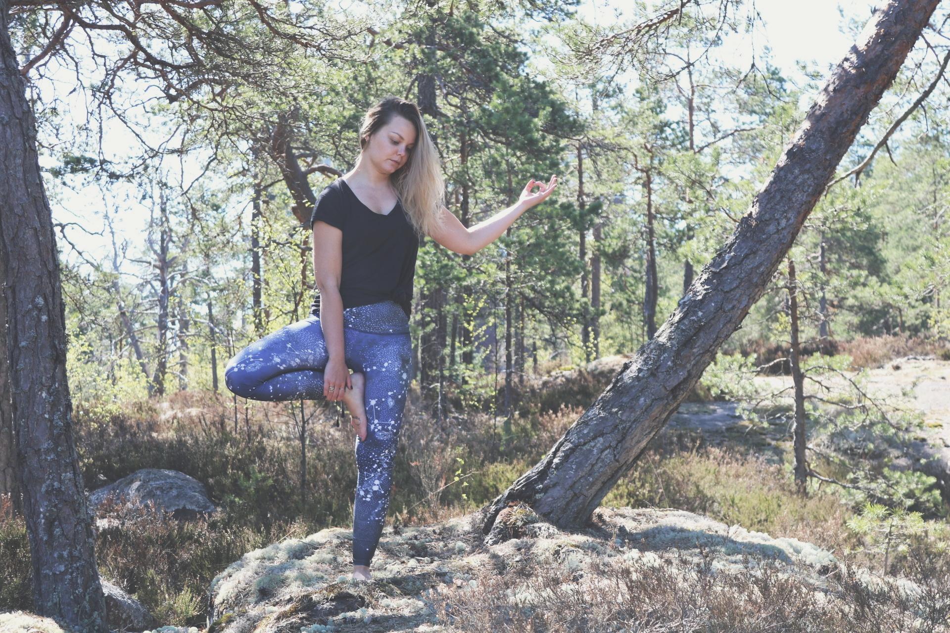 in_the_woods.jpg