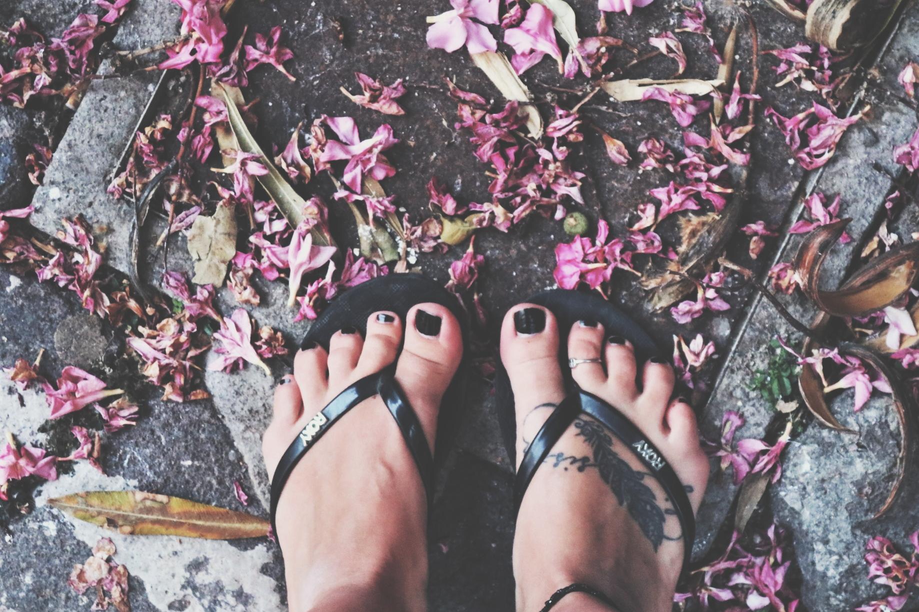 flower_street.jpg