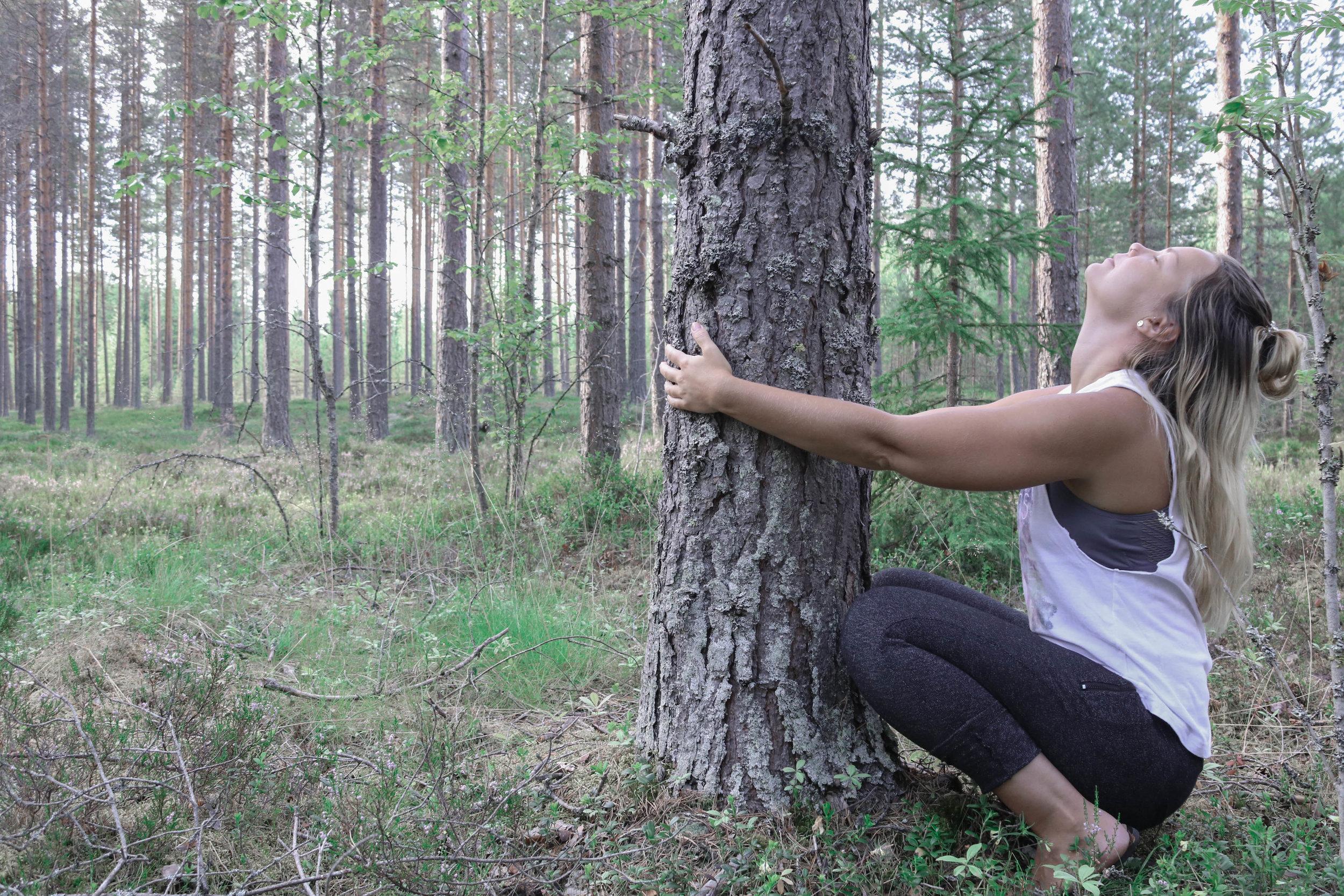 tree_hugger.jpg