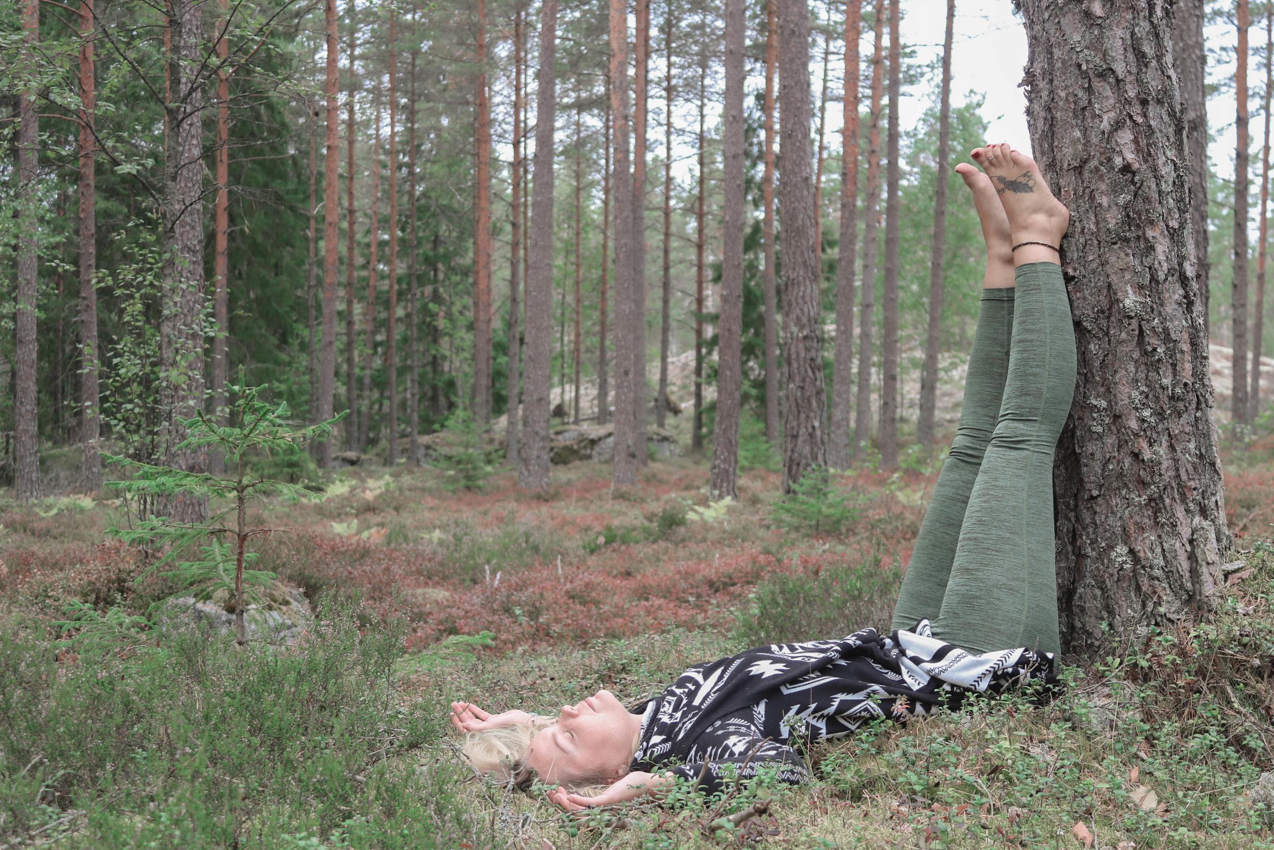 forest_yoga.jpg