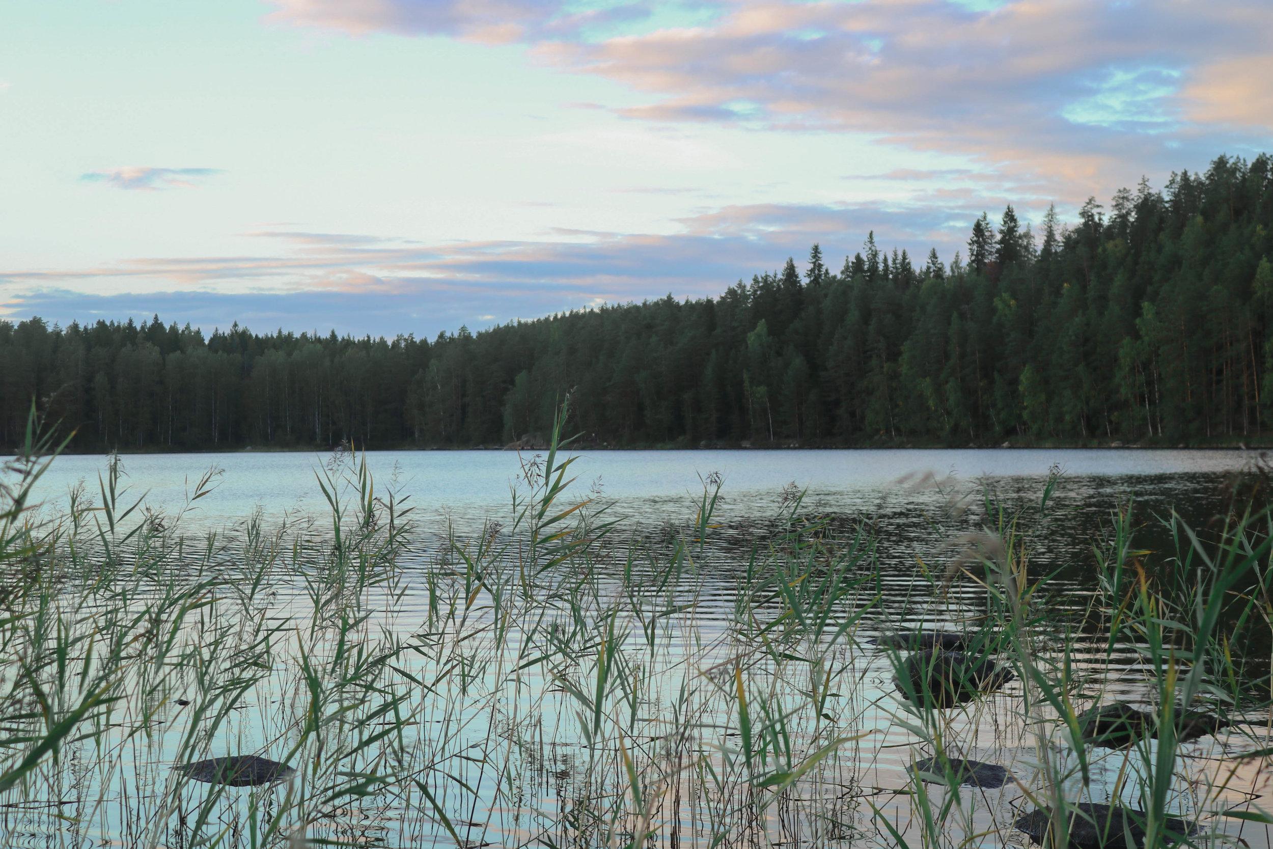 repoveden_kansallispuisto.jpg