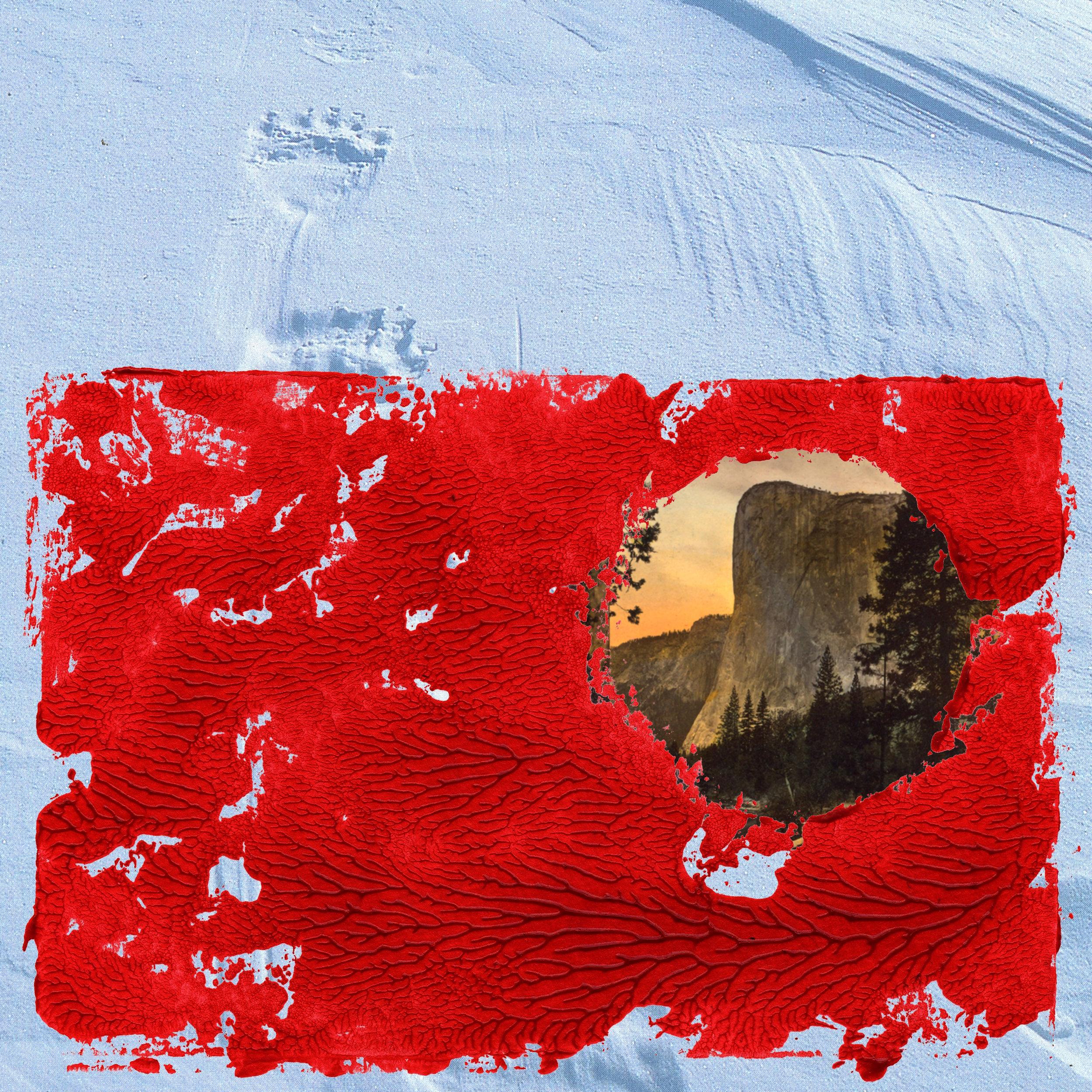 Red Album1.jpg