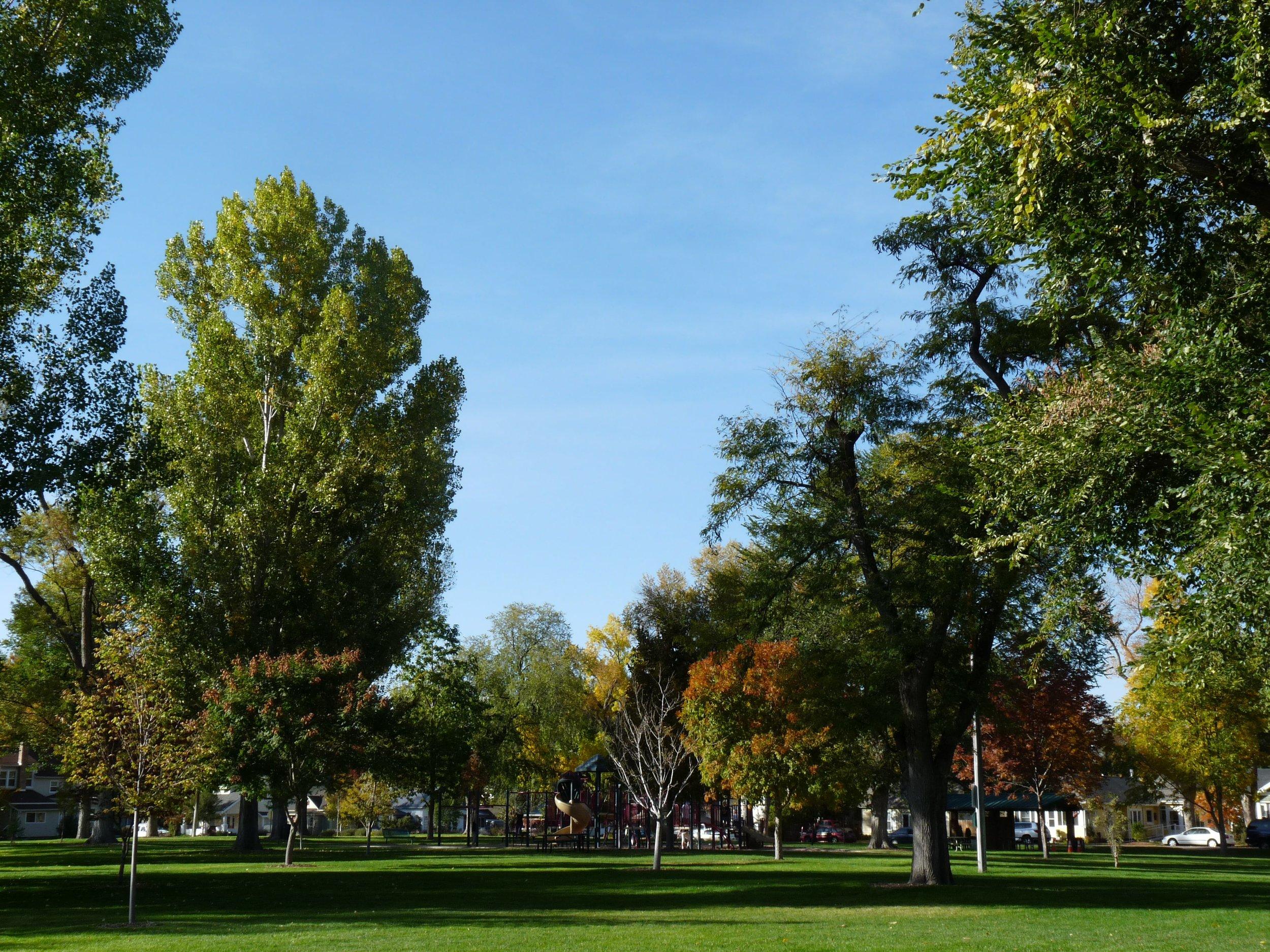 Main_Park_2_-_Windsor_CO-min.jpg