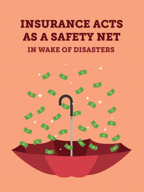 Safety_Net_Graphic-01.png