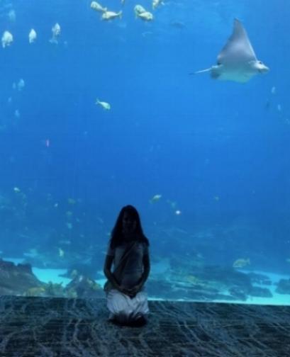 medit acquarium.jpg