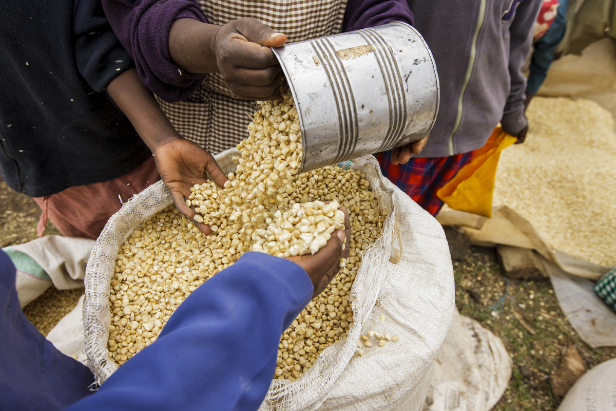 Why Should I Partner with the Private Sector?   Investing in private-sector businesses can help you achieve your development goals for smallholder farmers while building the long-term capacity of individual businesses. This section explains the importance of these partnerships.  Read more .