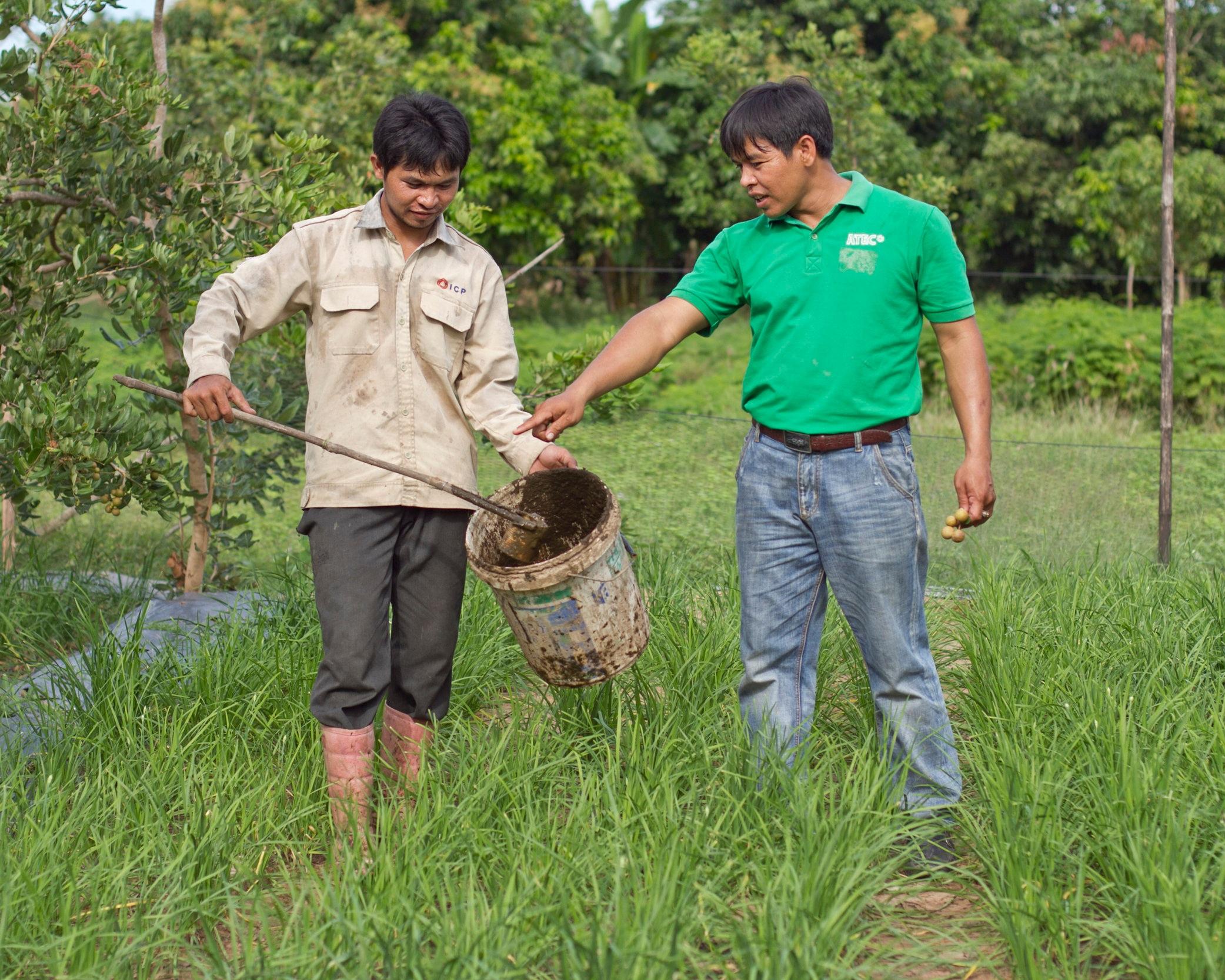 Cambodia_ATEC_Farmers+Applying+Fertilizer.jpg