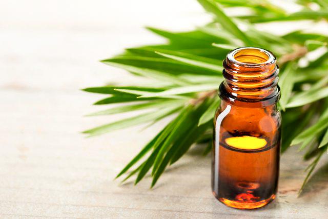 tea tree oil-2.jpg
