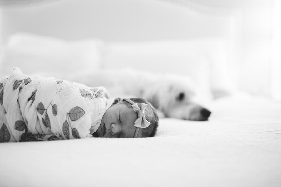 MOLLY & JUSTIN | NEWBORN